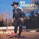 Bo Diddley Is A Gunslinger thumbnail