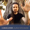 Journey Into Sound thumbnail