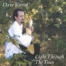 Light Through The Trees thumbnail