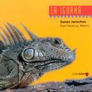 La Iguana: Sones Jarochos thumbnail