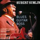 Blues Guitar Boss thumbnail