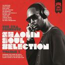 The RZA Presents Shaolin Soul Selection: Vol. 1 thumbnail