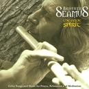 The Celtic Spirit thumbnail