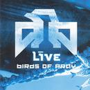 Birds Of Pray thumbnail