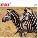 New World Africa thumbnail