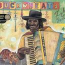 Buckwheat's Zydeco Party thumbnail