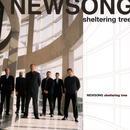 Sheltering Tree thumbnail
