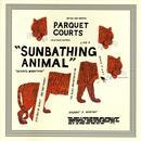 Sunbathing Animal thumbnail