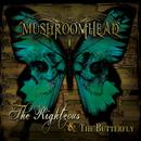 The Righteous & The Butterfly thumbnail