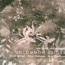 Uncommon Deities thumbnail