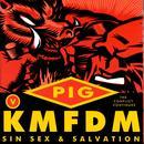 Sin, Sex & Salvation thumbnail