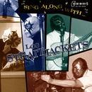 Sing Along With Los Straitjackets thumbnail