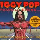 Roadkill Rising: The Bootleg Collection 1977-2009  thumbnail