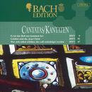 Kantaten Bwv 9-91-47 (Holland Boys Choir, Netherlands Bach Collegium) thumbnail