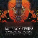 Bolero Gypsies: New Flamenco, Volume 1 thumbnail