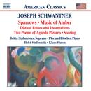 Joseph Schwantner: Sparrows; Music Of Amber; Distant Runes And Incanations; Two Poems; Soaring thumbnail