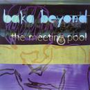 The Meeting Pool thumbnail