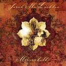 Mirrorball (Live) thumbnail