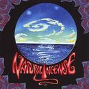 Natural Incense EP thumbnail