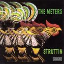 Struttin thumbnail