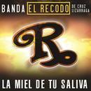 La Miel De Tu Saliva (Single) thumbnail
