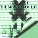 The Meaning Of Life thumbnail