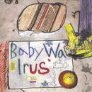 Baby Walrus thumbnail