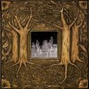 Under Branch & Thorn & Tree thumbnail