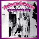 The Human Expression & Other Psychedelic Groups thumbnail