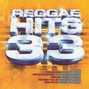 Reggae Hits - Vol.33 ( - The Remix) thumbnail