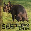 Seether (Single) thumbnail