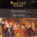 Bach: Violin Sonatas and Trio Sonatas thumbnail