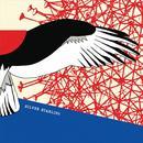 Silver Starling thumbnail