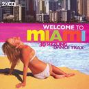 Welcome To Miami: Ibiza World Tour 04 thumbnail