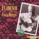 The Art Of Flamenco thumbnail