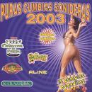 Puras Cumbias Sonideras 2003 thumbnail