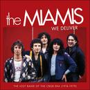 We Deliver: The Lost Band Of The CBGB Era (1974-1979) thumbnail