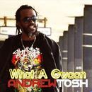 What A Gwaan (Single) thumbnail