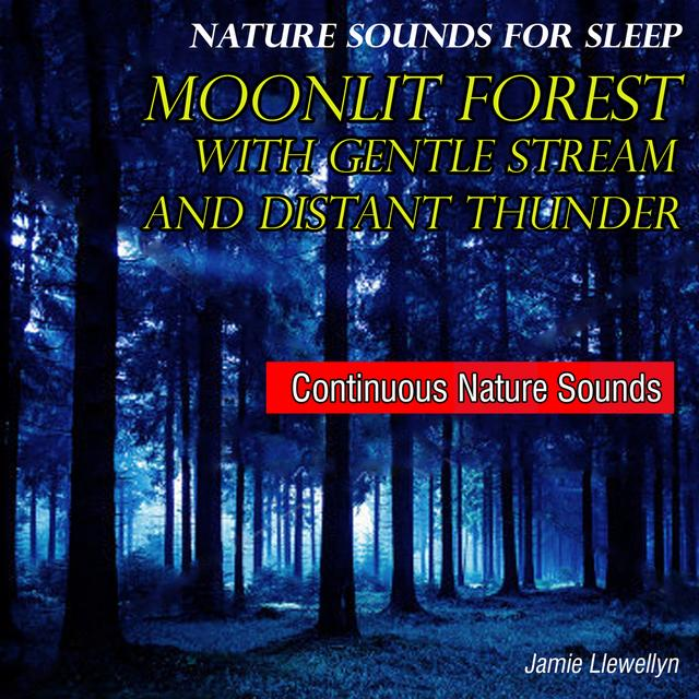 Natural Sounds: Moonlit Forest by Jamie Llewellyn - Pandora
